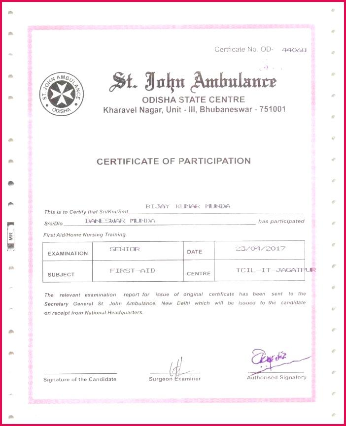 sport certificates samples best of free printable certificate templates new turabian template 0d of sport certificates samples