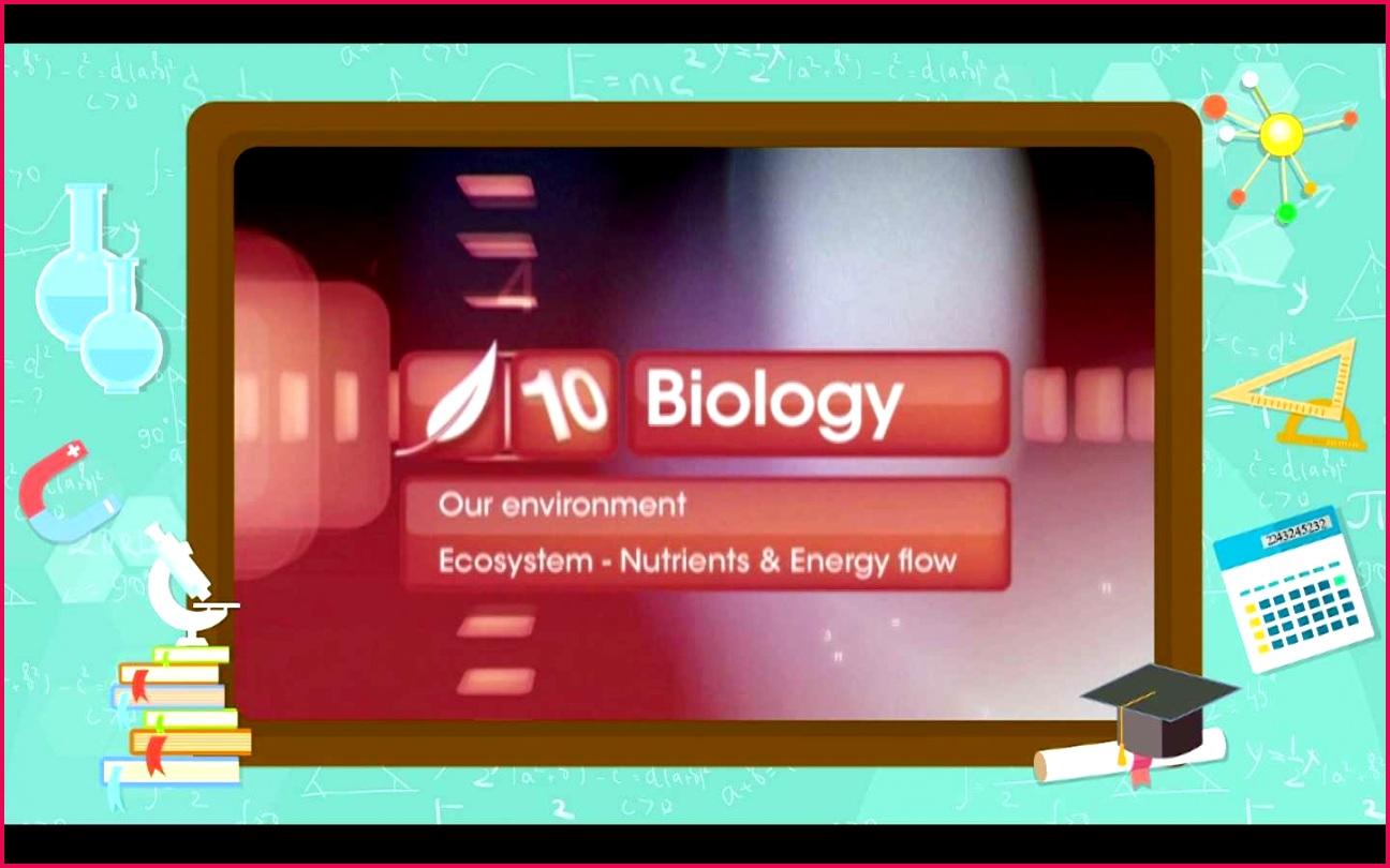 Ecosystem Nutrients and Energy Flow SEG 01 JPG
