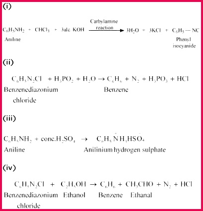 4651 a11 11 1 chapter 13 XII Chem GIF