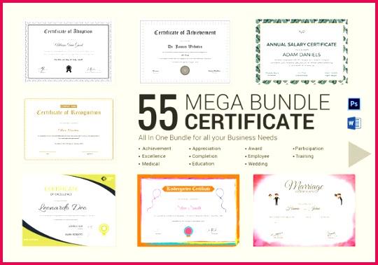 Best Mega Certificate Bundle