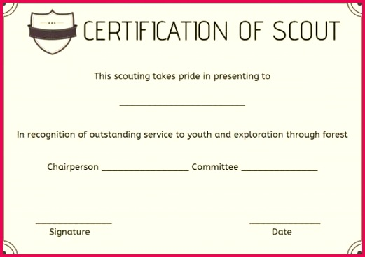 boy scout certificate of appreciation template the philippines