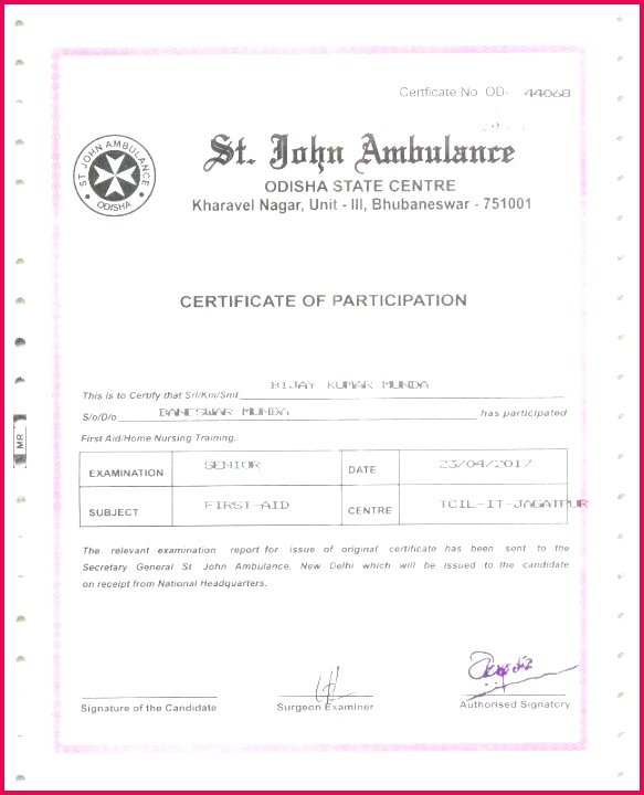 race bib template free elegant swimming award certificate awesome printable templates blank for word temp