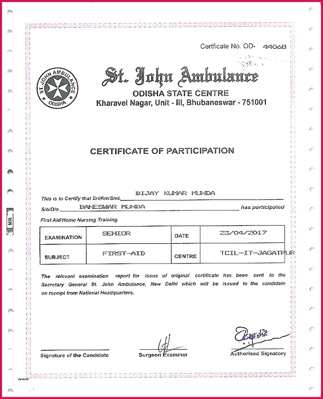 safety award certificate template templates free