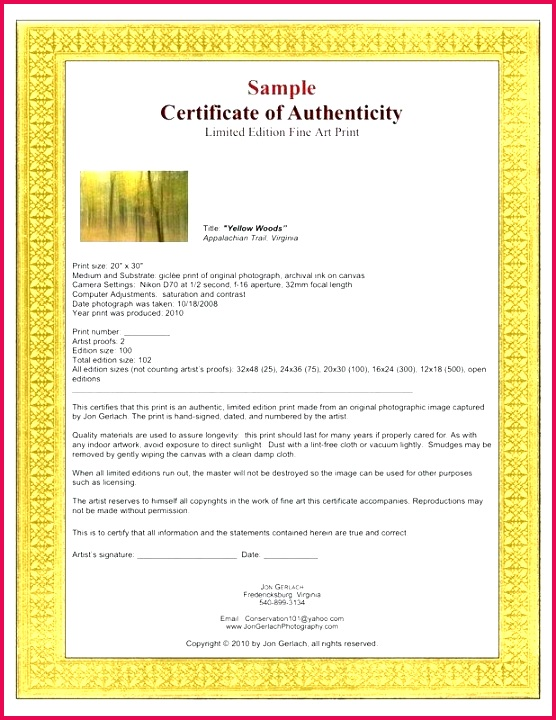 certificate of authenticity letter template word