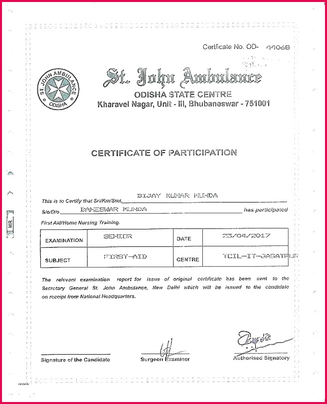 certificate of authenticity photography template photo certificate of authenticity template new templates photography certificate of authenticity
