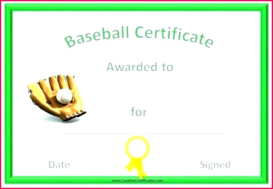 baseball certificate rd template free fresh template softball baseball profile template youth baseball player profile template baseball certificate rd template free fresh template softball certificate
