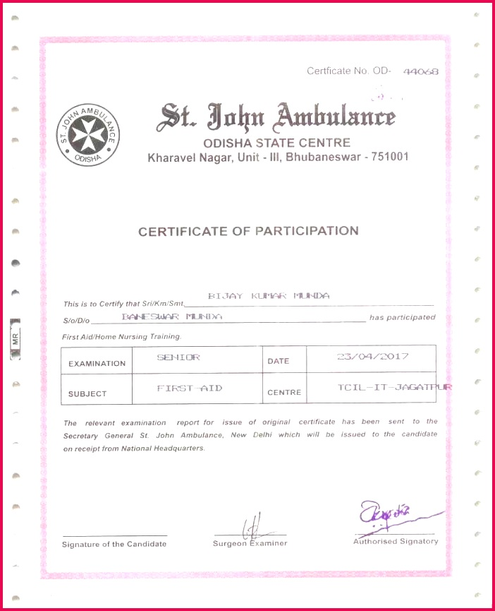 Sport Certificates Samples Best Free Printable Certificate Templates New Turabian Template 0d