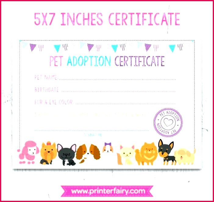 free printable pet birth certificate templates awesome cat puppy health record template unique rock adoption samp