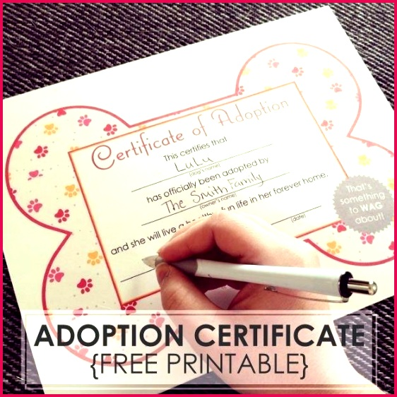 free dog adoption certificates printable little ones in puppy party birth certificate template