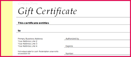 t voucher template microsoft word employee t certificate