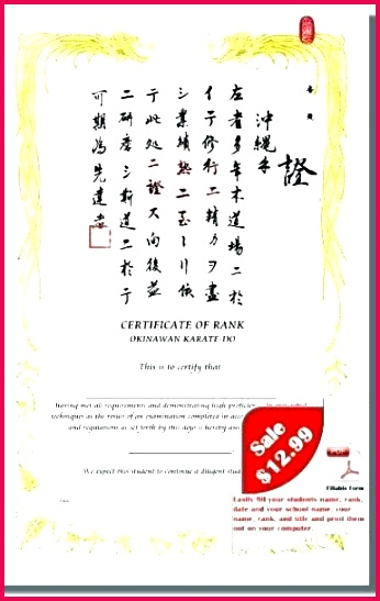 martial arts t certificate template beautiful art templates free award clipart certifi