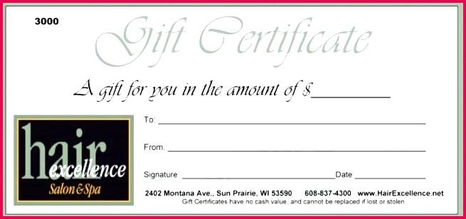 martial arts t certificates templates car certificate template detailing