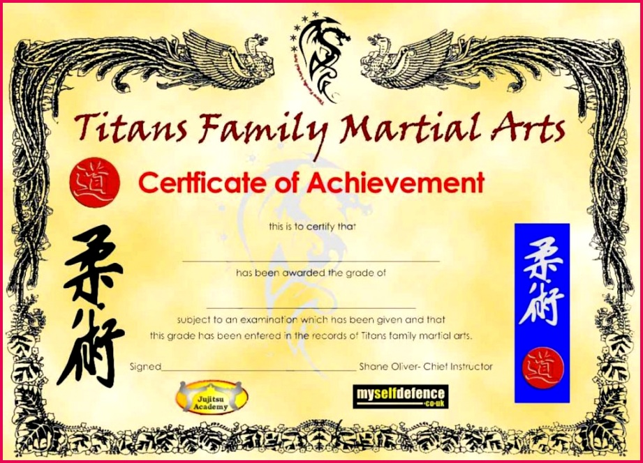 25 awesome martial arts certificate template blank martial arts certificates