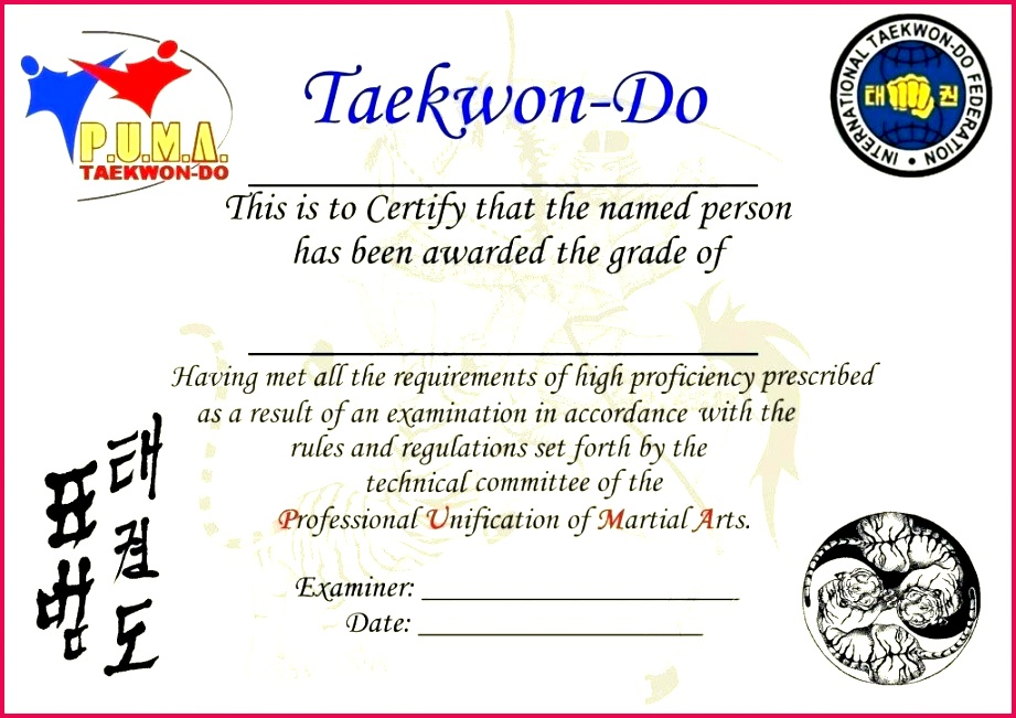 martial arts rank certificates templates free certificate border for cv t template powerpoint 2018