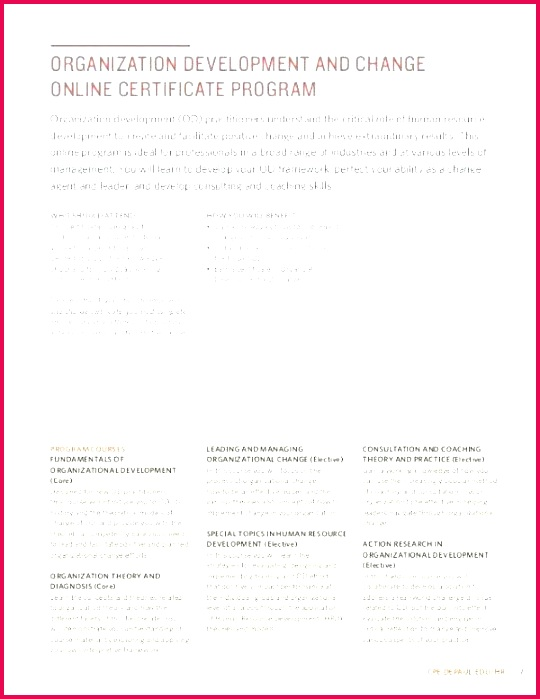 free dog birth certificate template word unique training do not enter templates specialization c header certifica