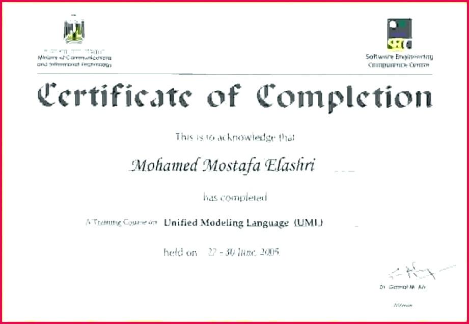 Certificate Template Doc Sample Certificate Format Training Training Certificate Template Fire Extinguisher Training Certificate Template