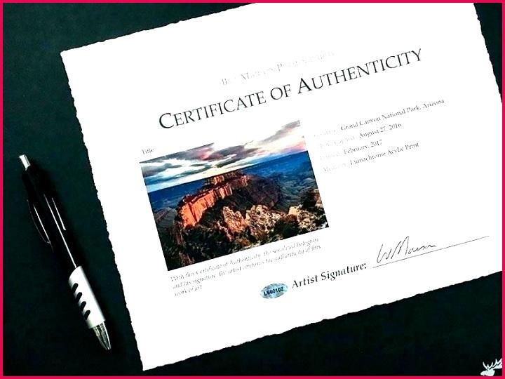signature certificate of authenticity template limited edition print certificate of authenticity template intended signature certificate of