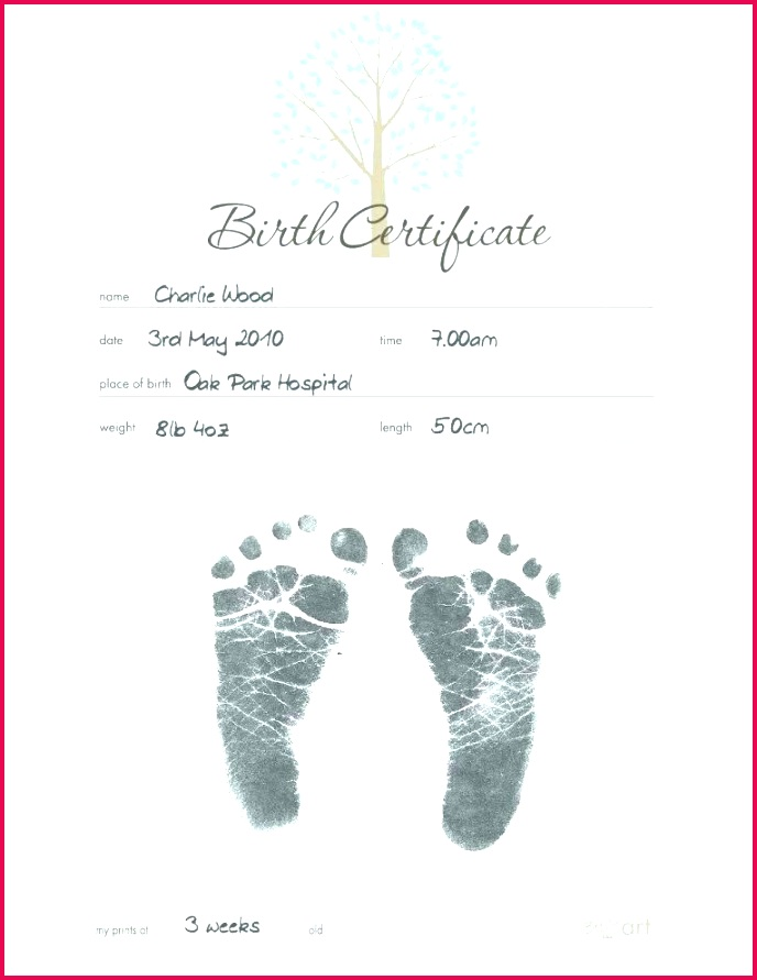 6 sample stillbirth certificate template 67467