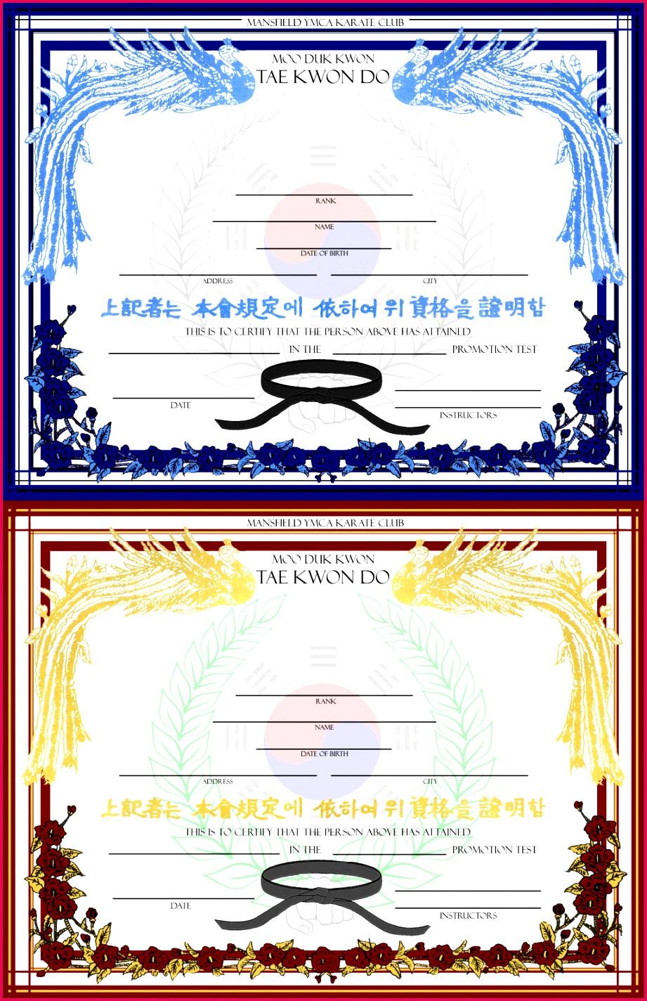 free karate certificates templates