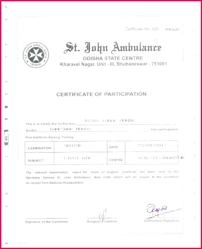 3 Template for Certificate Of Excellence 21191   FabTemplatez