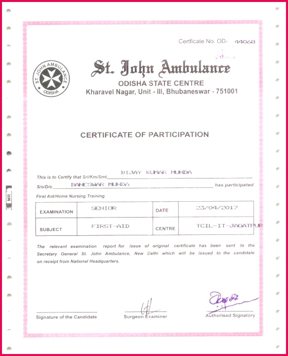 Impressive Resume Templates New Army Certificate Appreciation