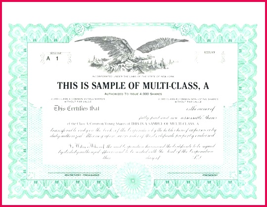 sample stock certificate ms word share template standard certificates samples cs cipc
