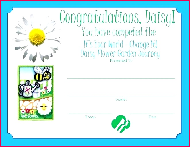 daisy award certificate template best girl scout certificates images on ideas printable free s