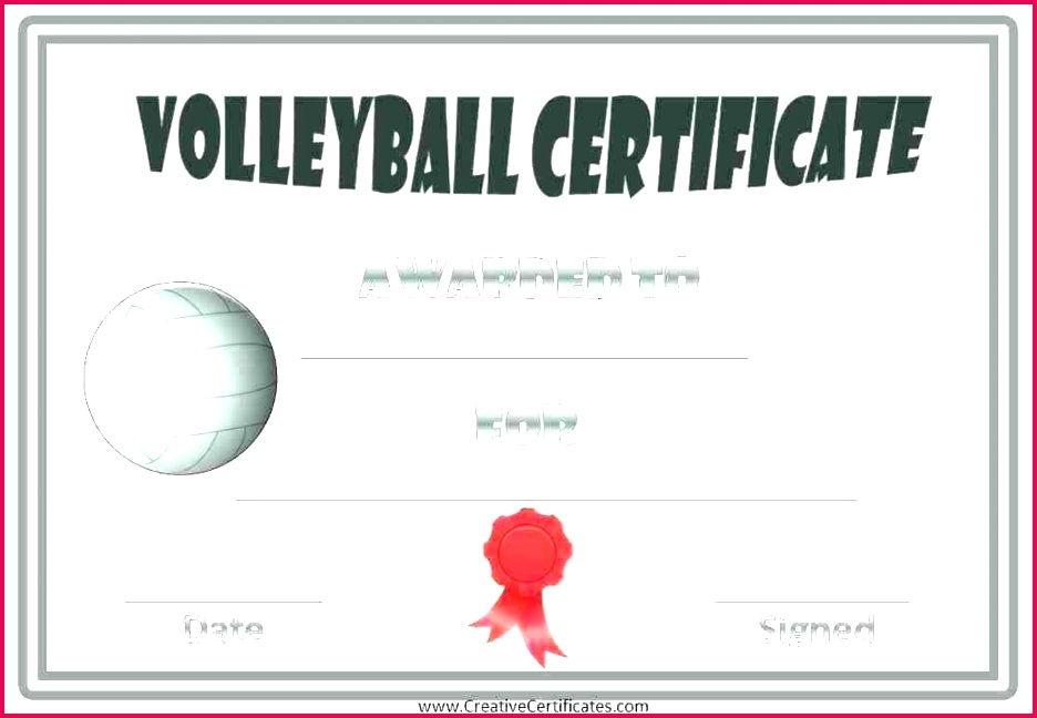 volleyball award ideas printable certificate templates template roster sheet images of free paper plate