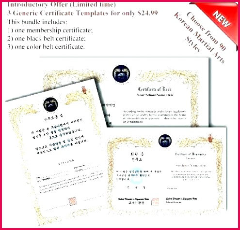 martial arts t certificate template new generic certificates format templates for timeline g tattoo t certificate template free unique martial arts templates templates powerpoint 2010