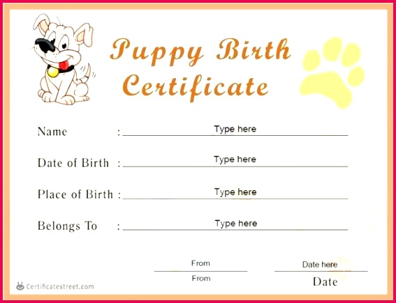 best ideas for blank puppy birth certificate template in free printable stuffed animal awesome collection