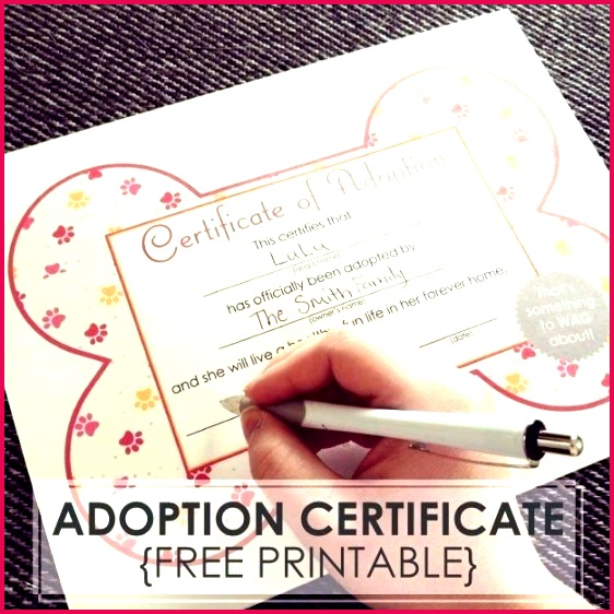 free dog adoption certificates printable puppy birth certificate template word for microsoft format premium templates pup