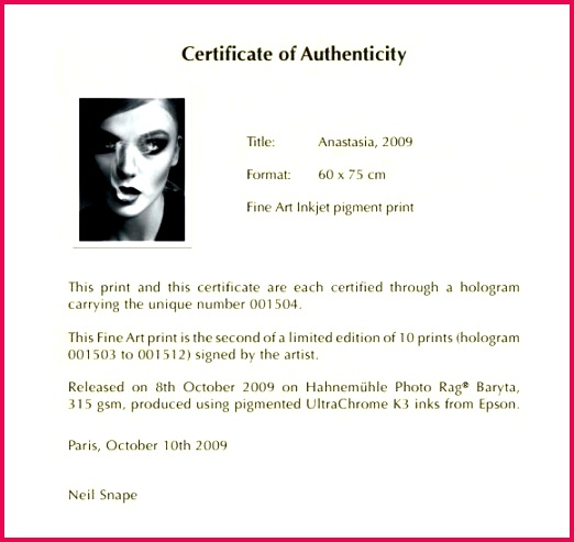artist certificate of authenticity template art microsoft word
