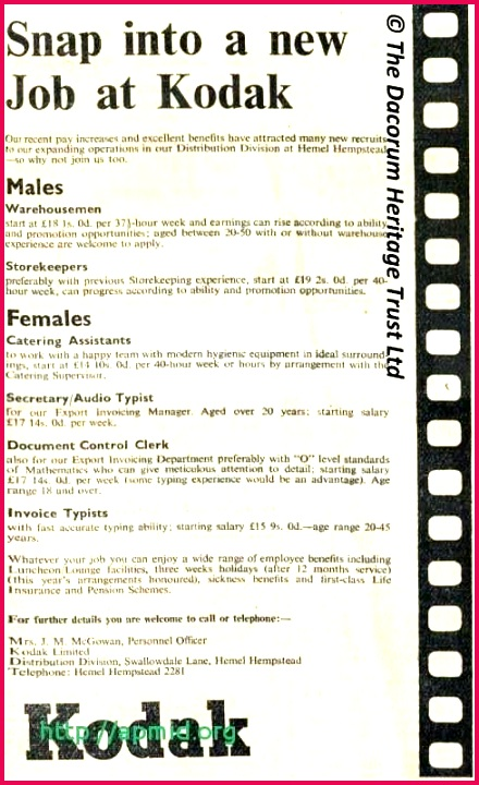5 toy Adoption Certificate Template 18769   FabTemplatez